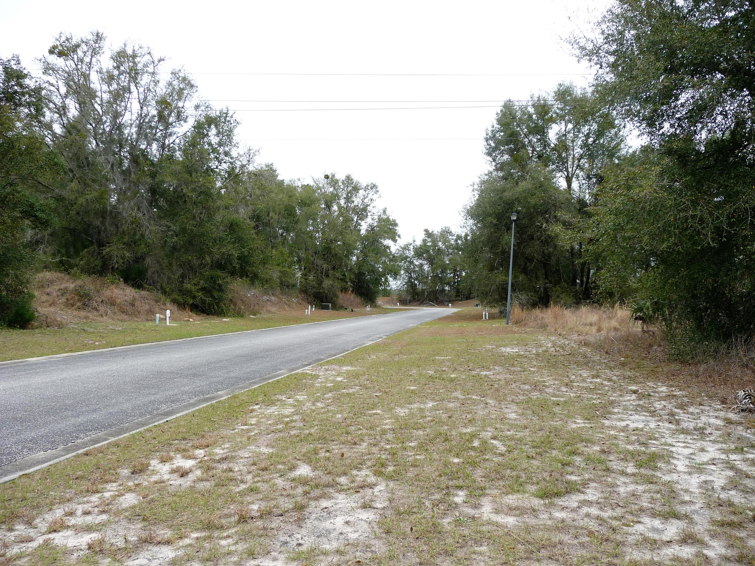 217 RIVER HILL, WELAKA, FLORIDA 32193, ,Vacant land,For sale,RIVER HILL,1059562