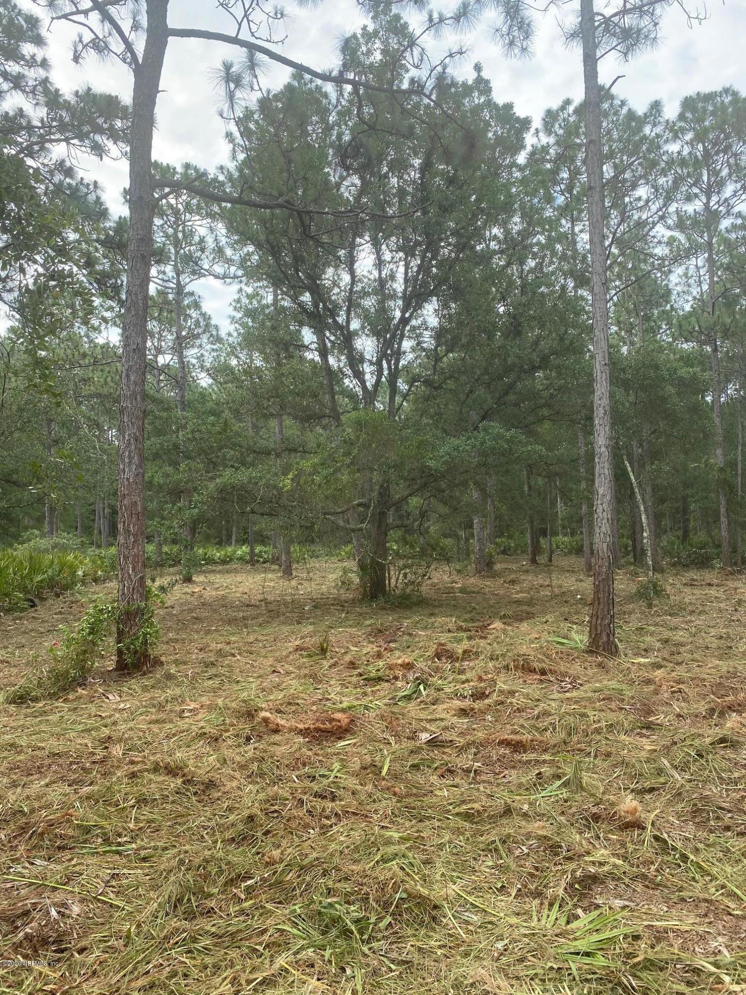 0 PATRICIA, FERNANDINA BEACH, FLORIDA 32034, ,Vacant land,For sale,PATRICIA,1032829