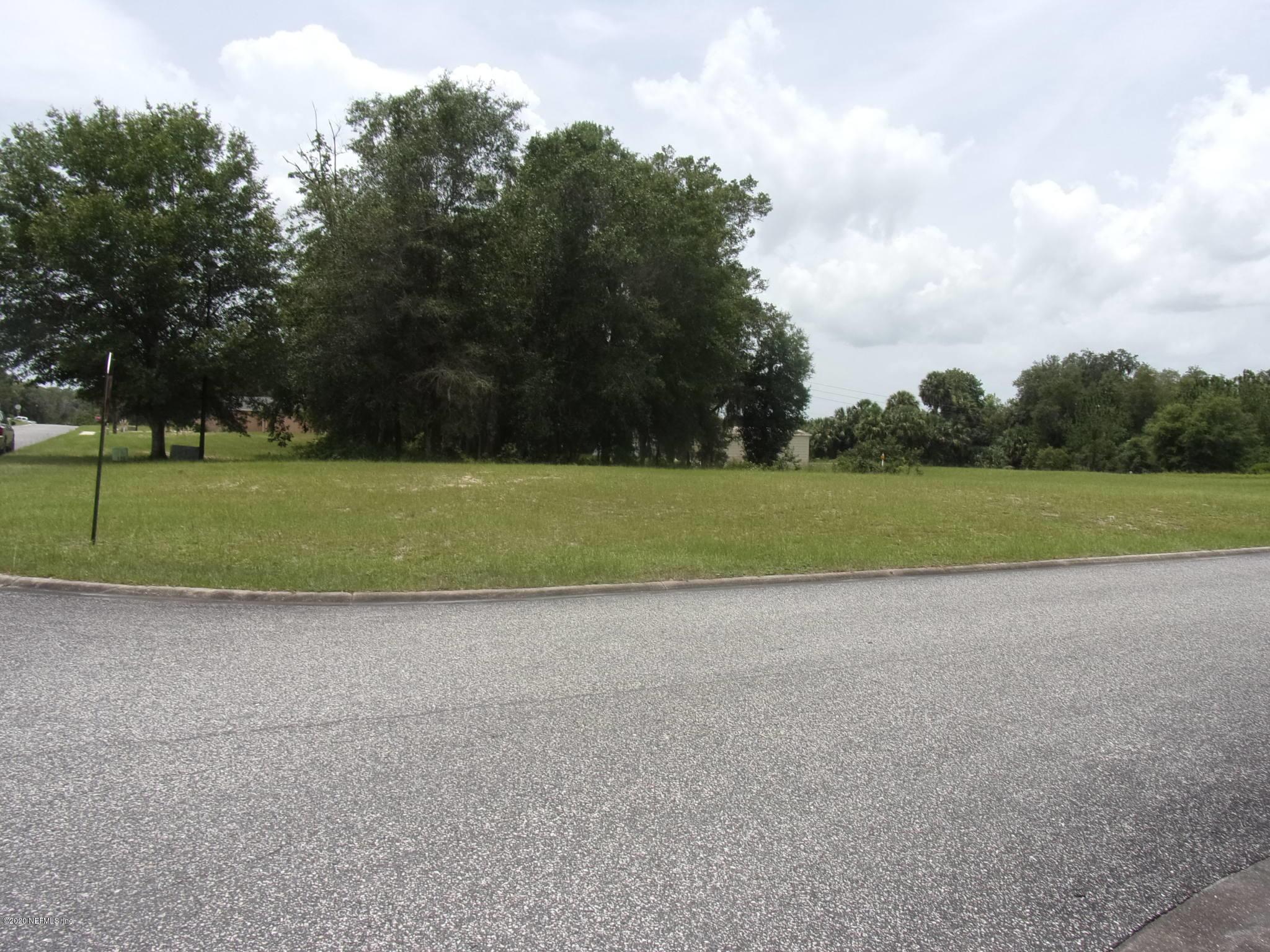 000 VILLAGE, WELAKA, FLORIDA 32193, ,Vacant land,For sale,VILLAGE,1041216
