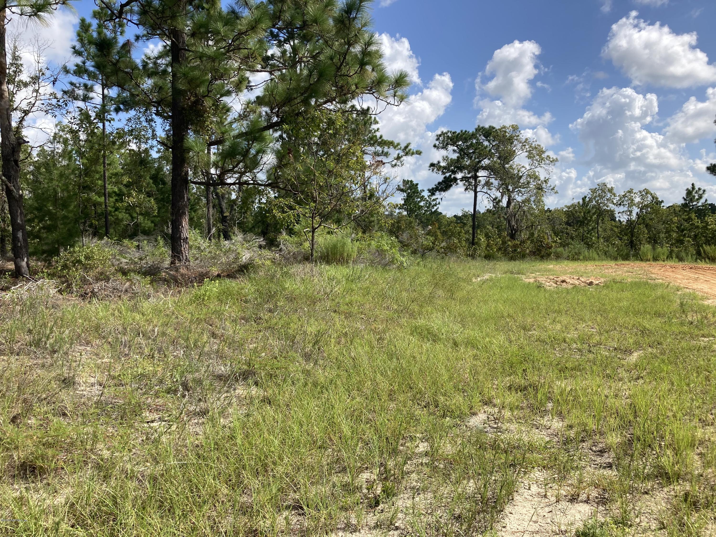 238 DEW DROP, HAWTHORNE, FLORIDA 32640, ,Vacant land,For sale,DEW DROP,1066153