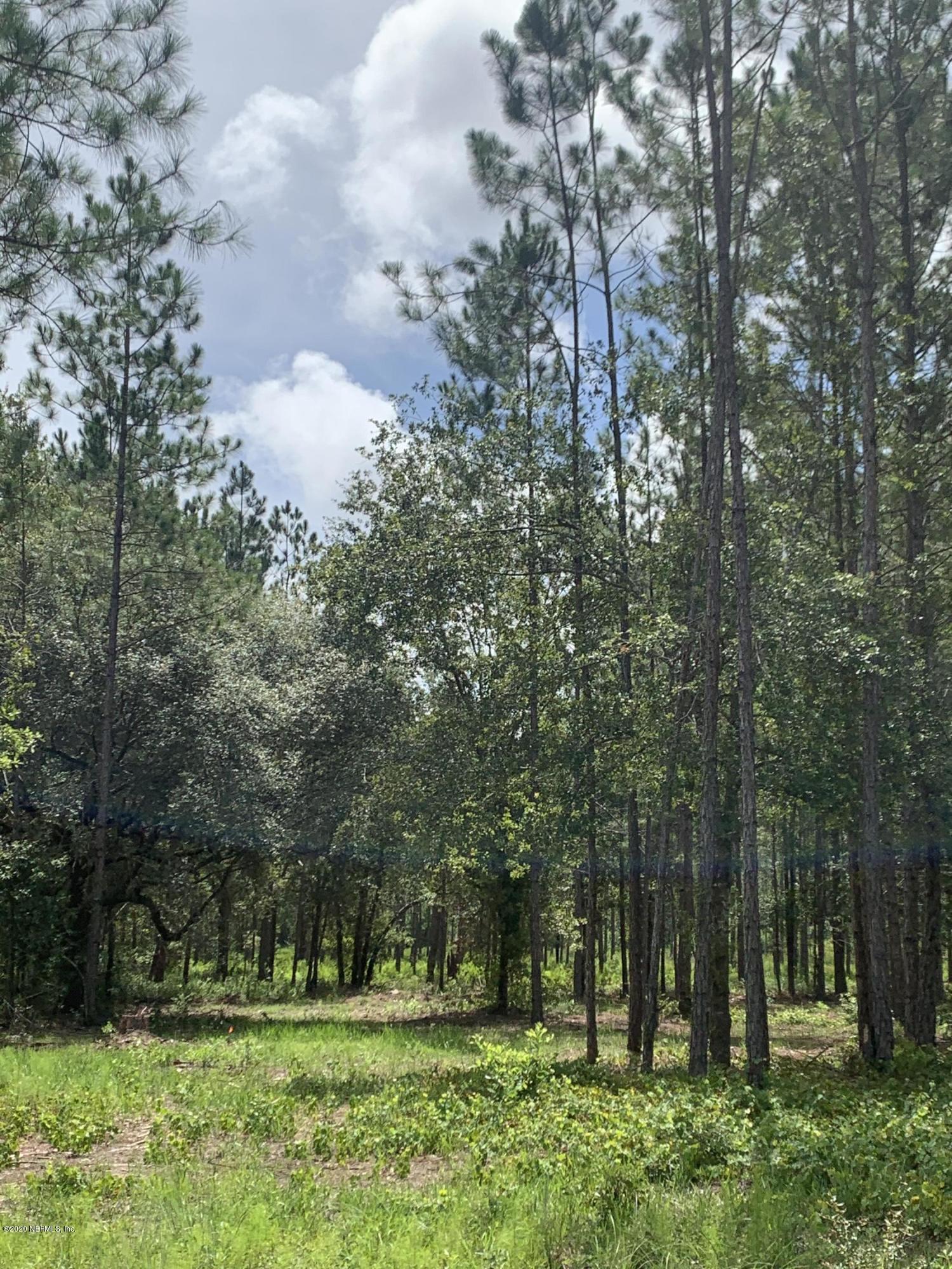 0 (LOT11) 80TH, HAMPTON, FLORIDA 32044, ,Vacant land,For sale,80TH,1011490