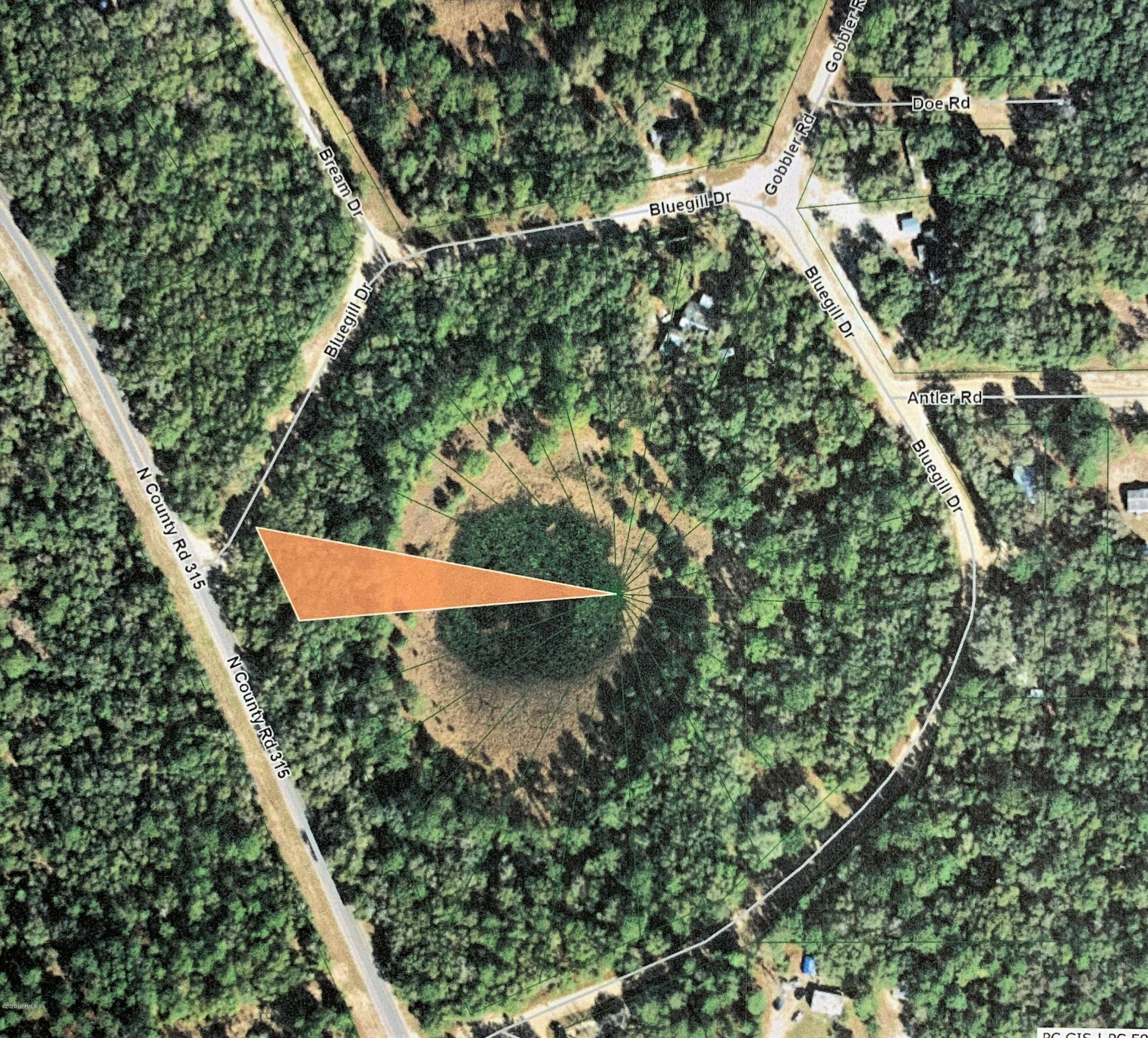 610 COUNTY ROAD 315, INTERLACHEN, FLORIDA 32148, ,Vacant land,For sale,COUNTY ROAD 315,1070484