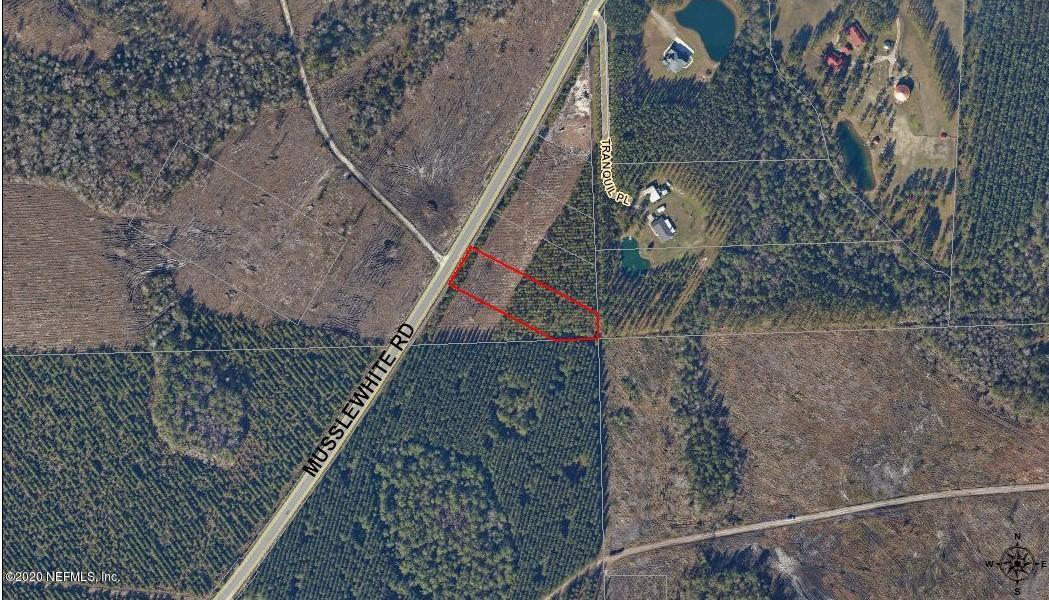 45488 MUSSLEWHITE, CALLAHAN, FLORIDA 32011, ,Vacant land,For sale,MUSSLEWHITE,1073344