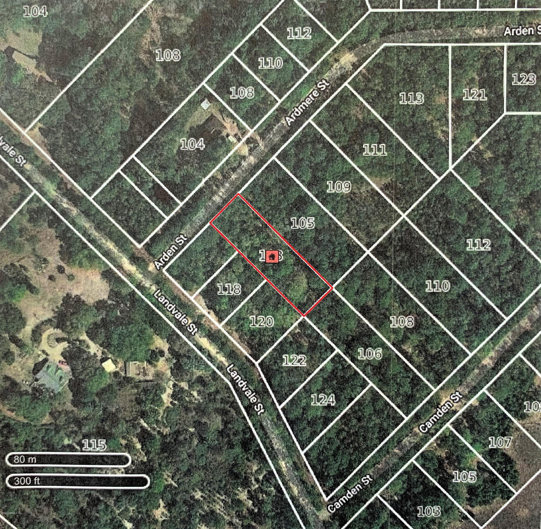 103 ARDEN, GEORGETOWN, FLORIDA 32139, ,Vacant land,For sale,ARDEN,1073314