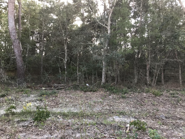 113 COLORADO, SATSUMA, FLORIDA 32189, ,Vacant land,For sale,COLORADO,1080357