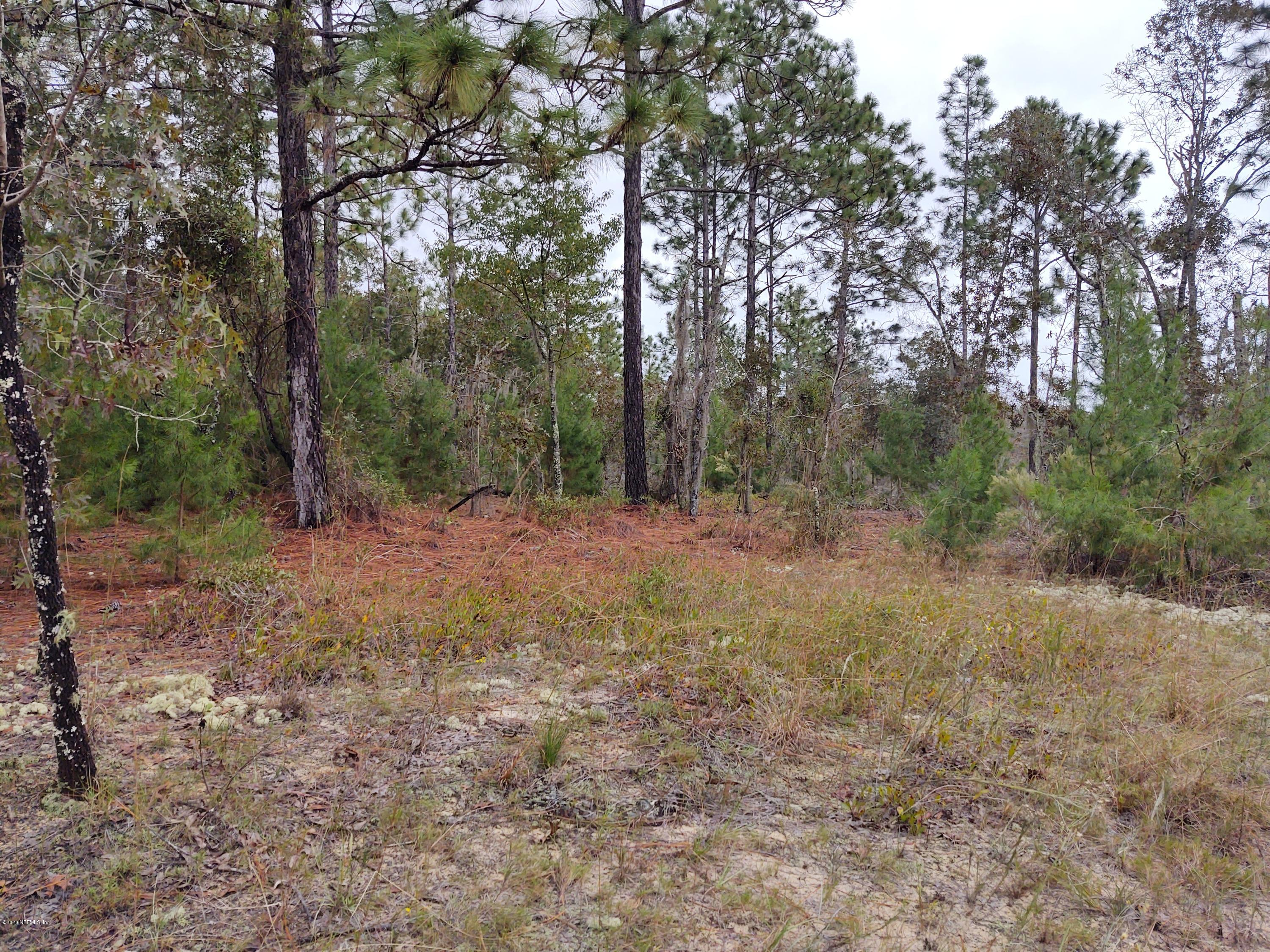 044 55TH, INTERLACHEN, FLORIDA 32148, ,Vacant land,For sale,55TH,1082430