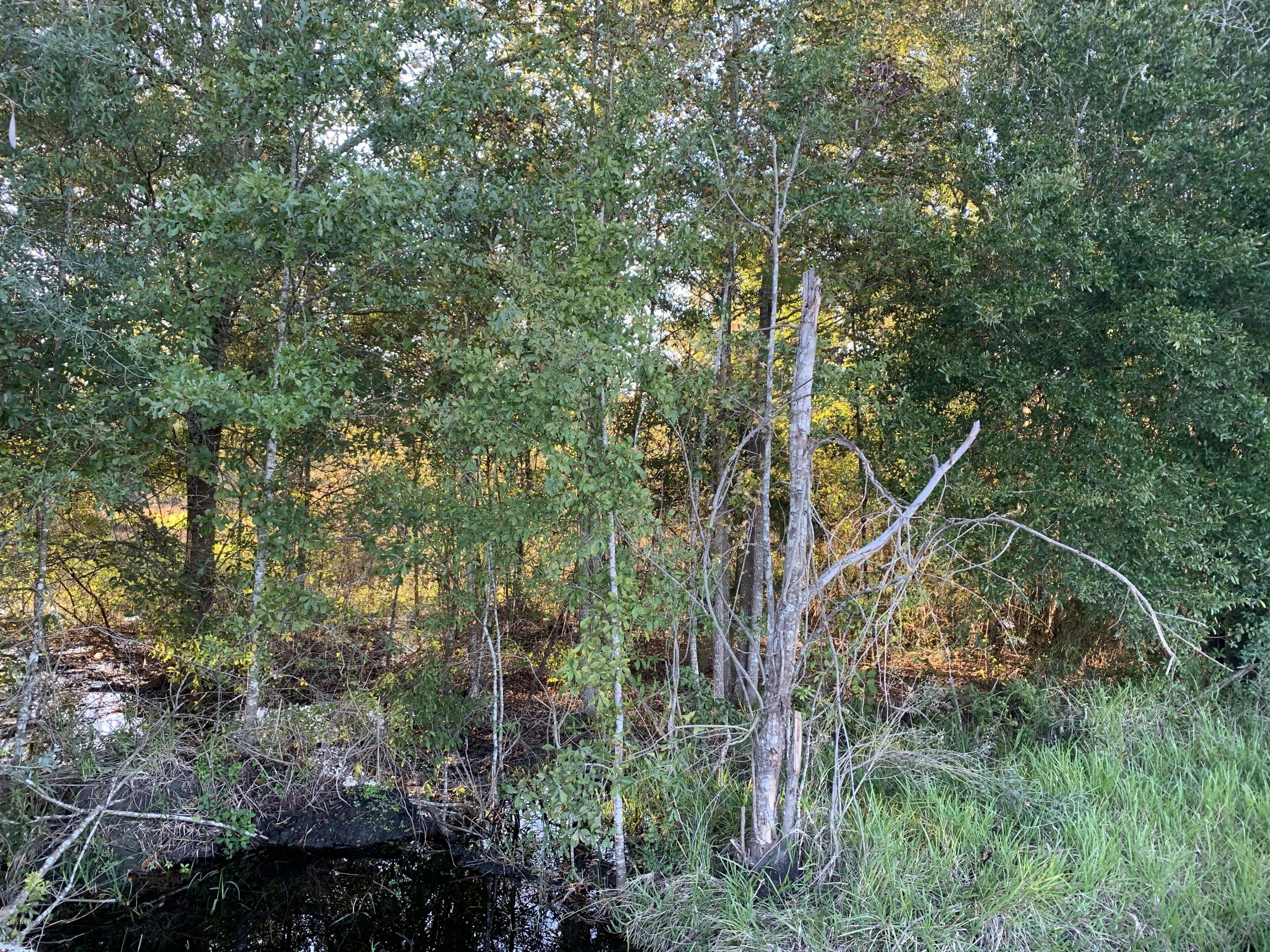 00 CO RD 229A, STARKE, FLORIDA 32091, ,Vacant land,For sale,CO RD 229A,1083072