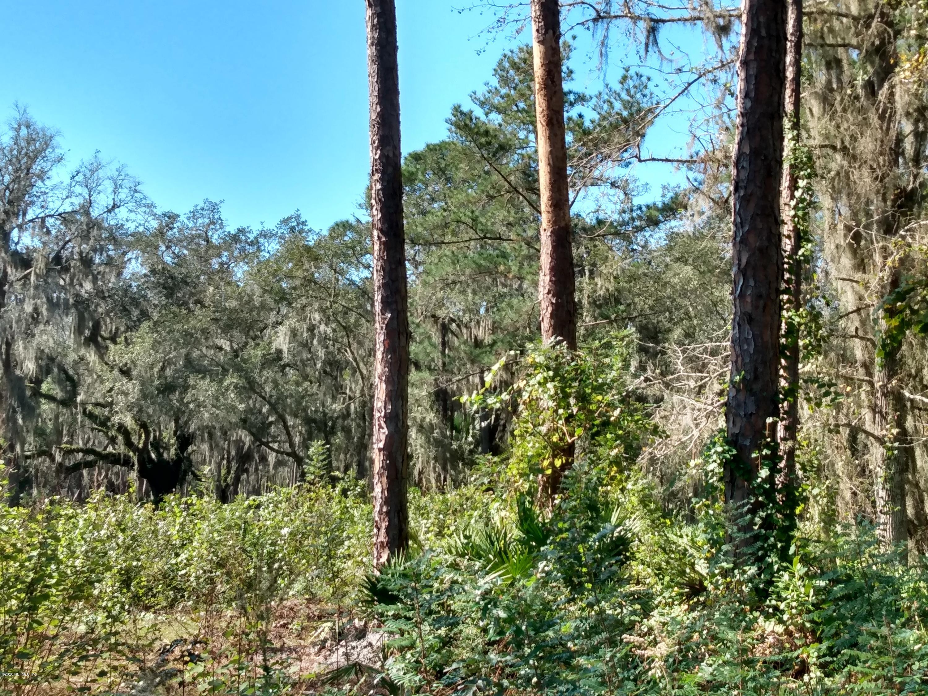 287 RIVER, EAST PALATKA, FLORIDA 32131, ,Vacant land,For sale,RIVER,1083104