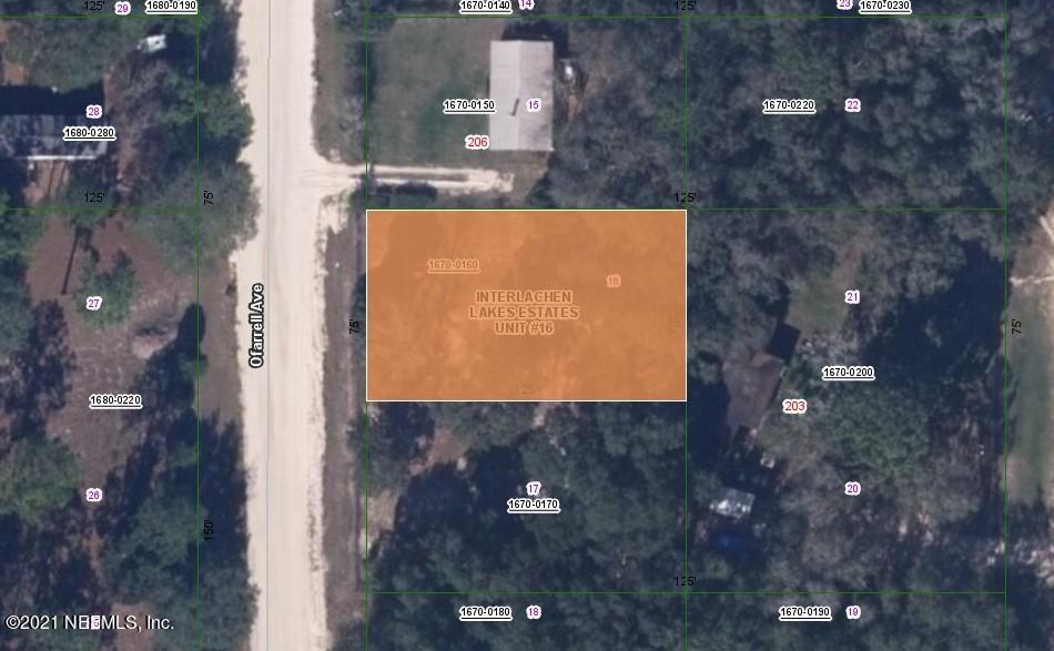 204 O FARRELL, INTERLACHEN, FLORIDA 32148, ,Vacant land,For sale,O FARRELL,1090093