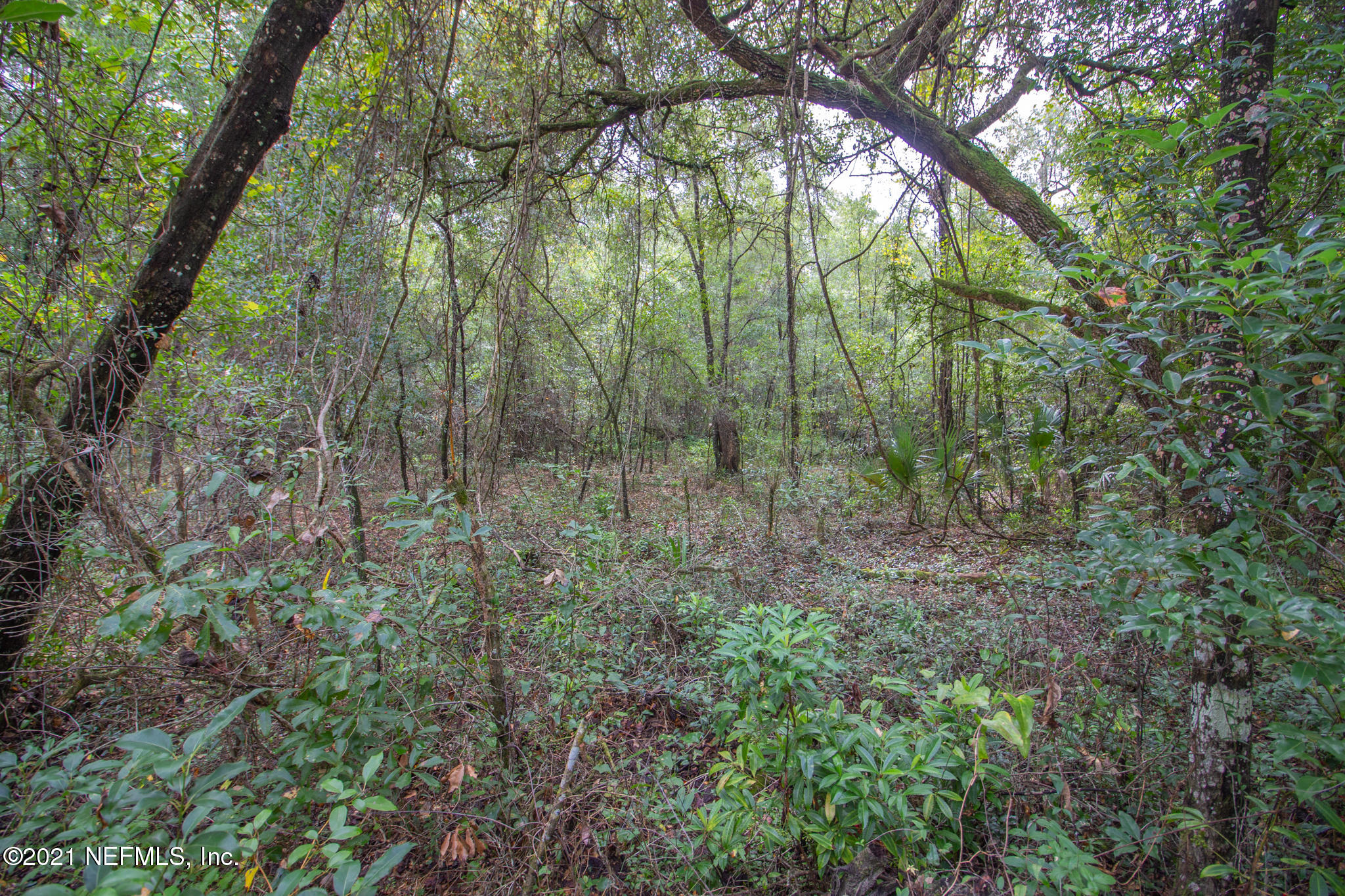 0 PRICE, HAWTHORNE, FLORIDA 32640, ,Vacant land,For sale,PRICE,1090097