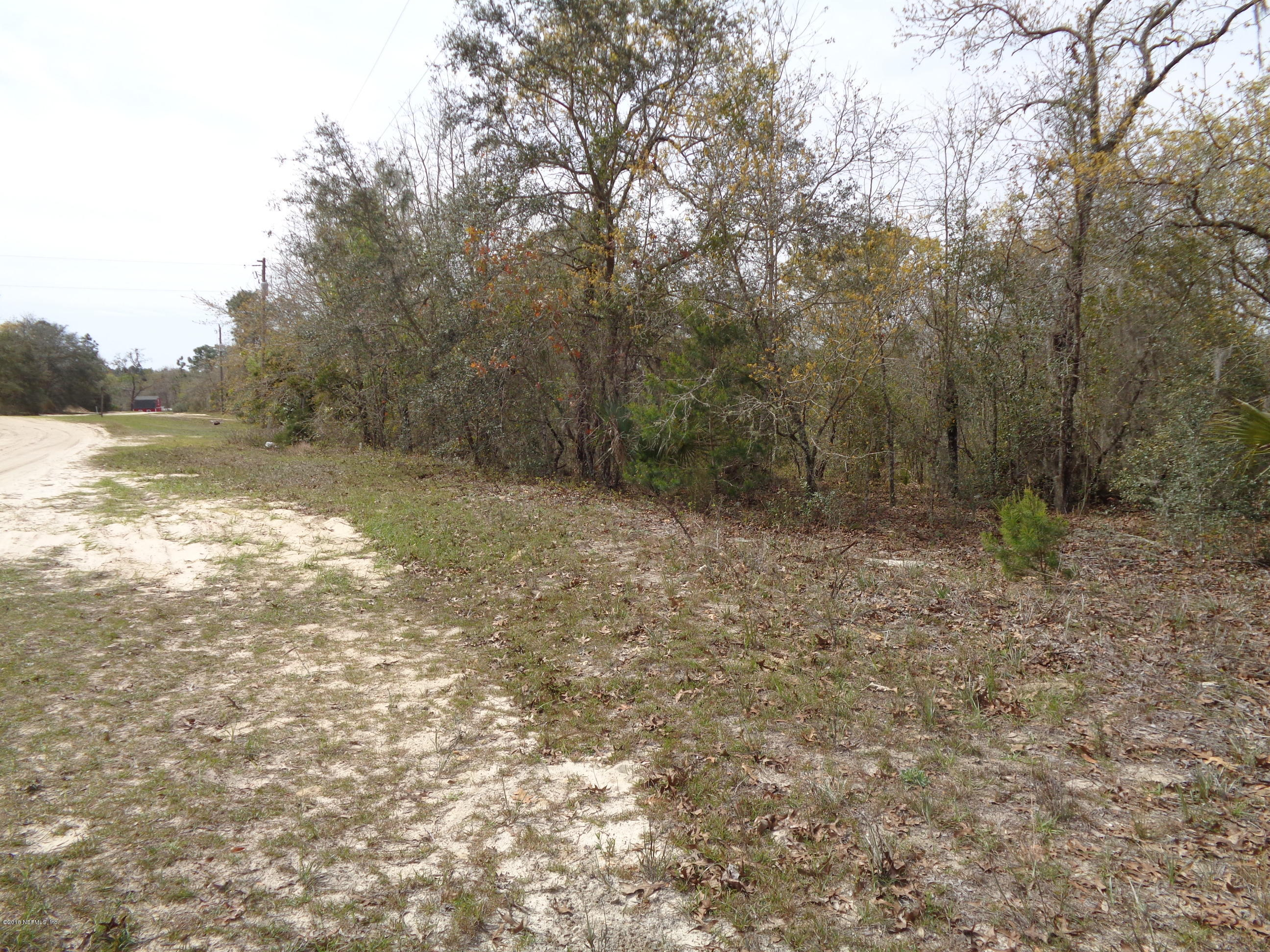 0 LONG BRANCH, INTERLACHEN, FLORIDA 32148, ,Vacant land,For sale,LONG BRANCH,1091223