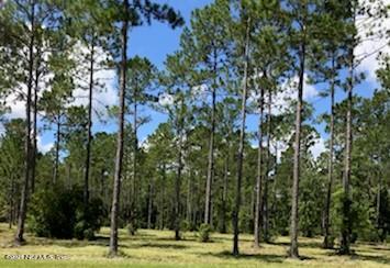 9794 KINGS CROSSING, JACKSONVILLE, FLORIDA 32219, ,Vacant land,For sale,KINGS CROSSING,1096168