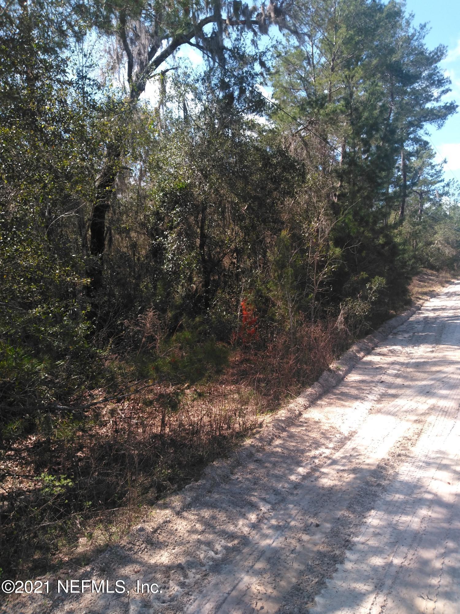 303 OLEANDER, POMONA PARK, FLORIDA 32181, ,Vacant land,For sale,OLEANDER,1096206
