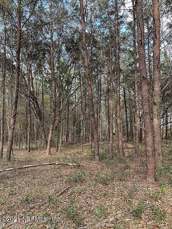 0 ORANGE TREE, POMONA PARK, FLORIDA 32181, ,Vacant land,For sale,ORANGE TREE,1107260