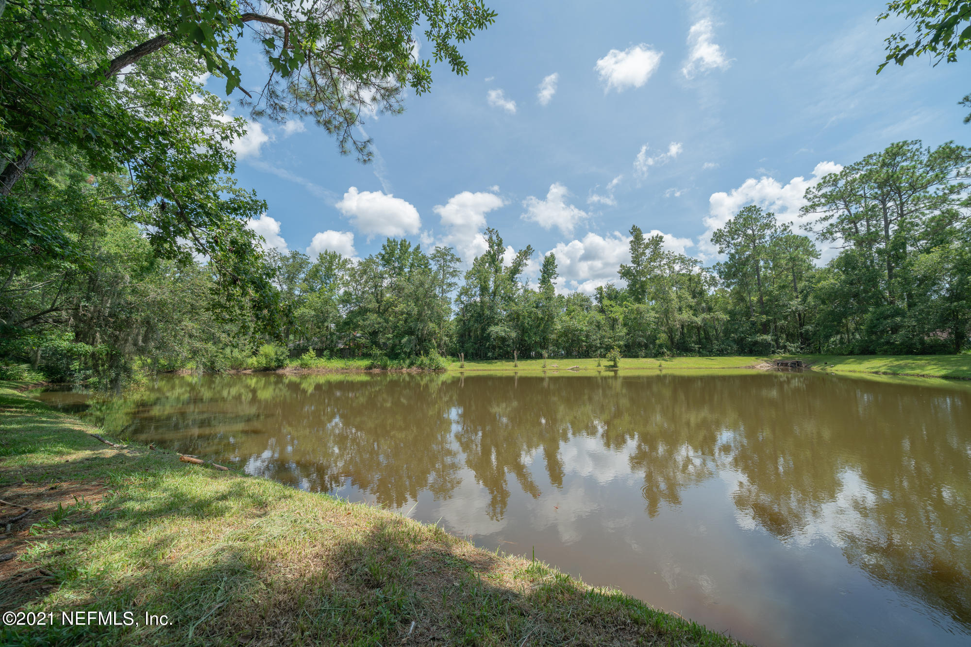 4310 CARRIAGE CROSSING DR JACKSONVILLE - 30
