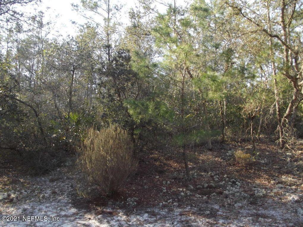 110 HILLSBOROUGH, FLORAHOME, FLORIDA 32140, ,Vacant land,For sale,HILLSBOROUGH,1123767