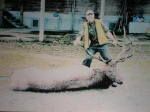 Elk & Fish 001