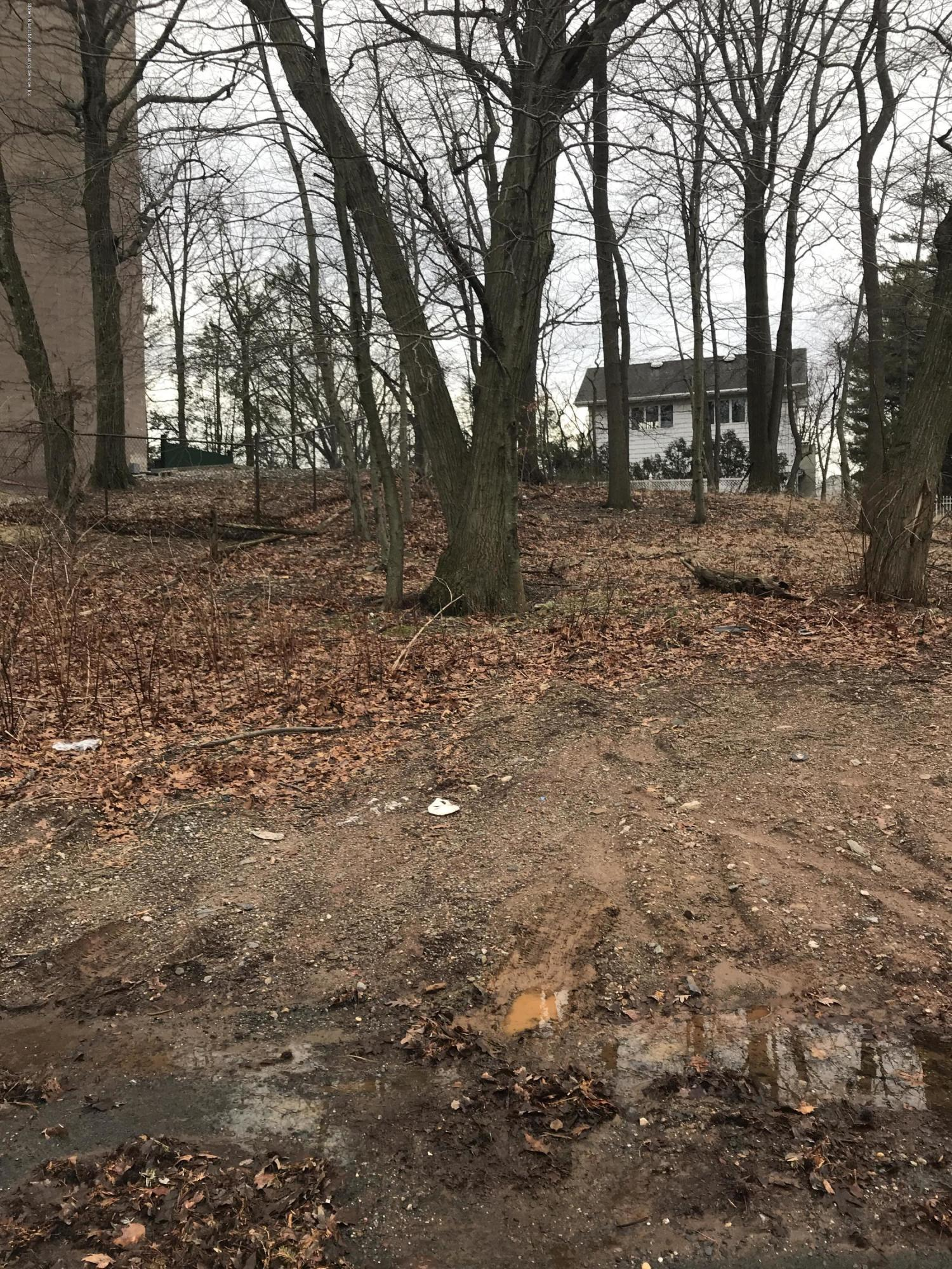 Land/Lots in Todt Hill - 130 Merrick Avenue  Staten Island, NY 10304