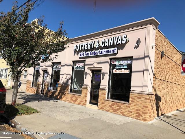 Commercial 1221-1223 Bay Street  Staten Island, NY 10305, MLS-1123837-3