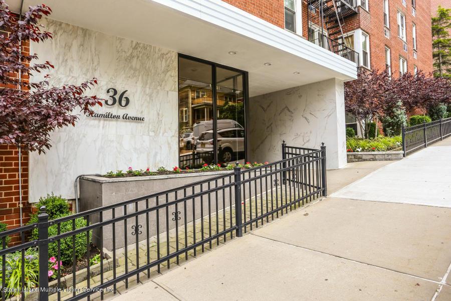 1c 36 Hamilton Avenue,Staten Island,New York,10301,United States,1 Bedroom Bedrooms,5 Rooms Rooms,1 BathroomBathrooms,Residential,Hamilton,1133898
