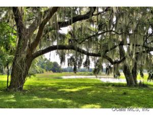 Property for sale at 4145 E Highway 318, Citra,  Florida 32113