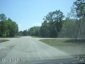 0 MALAUKA LOOP RUN, OCKLAWAHA, FL 32179  Photo 3