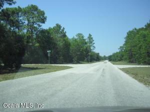 0 MALAUKA LOOP RUN, OCKLAWAHA, FL 32179  Photo 4
