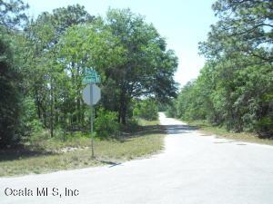 0 MALAUKA LOOP RUN, OCKLAWAHA, FL 32179  Photo 7