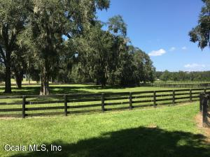 14975 NW 96TH PLACE, MORRISTON, FL 32668  Photo 13