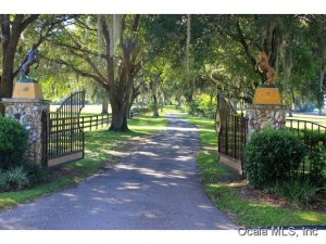 Property for sale at 800 SW 85th Avenue, Ocala,  Florida 34481