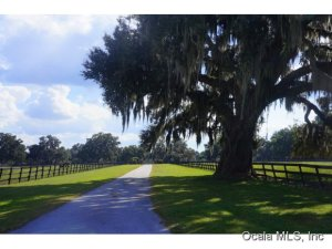 Property for sale at 13418 NW Highway 225, Reddick,  Florida 32686