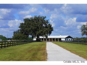 Property for sale at 13430 NW Highway 225, Reddick,  Florida 32686