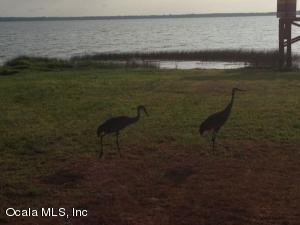 Property for sale at 13764 S Hwy 25, Ocklawaha,  Florida 32179