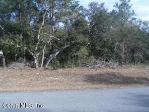 0 SW 206 AVENUE, DUNNELLON, FL 34431  Photo 7