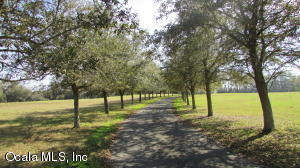 14191 N US HIGHWAY 441, CITRA, FL 32113  Photo 2