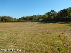 7795 SW 80TH  PLACE ROAD, OCALA, FL 34476  Photo 7