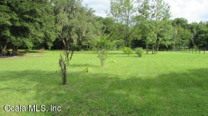 3000 NW 155TH STREET, REDDICK, FL 32686  Photo 4