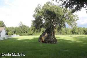 27 NEVER BEND DRIVE, OCALA, FL 34482  Photo 9