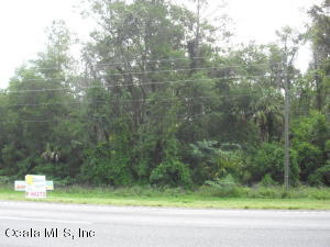 LOT 9 N US HWY 441, CITRA, FL 32113  Photo 4