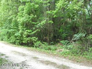 LOT 9 N US HWY 441, CITRA, FL 32113  Photo 11