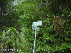 LOT 9 N US HWY 441, CITRA, FL 32113  Photo 13