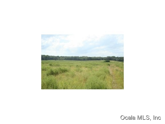 120 Acre Ocala, Florida Land for Sale – OHP4397 – Ocala