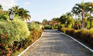 Terreno En Venta En Chame, Gorgona, Panama, PA RAH: 15-664