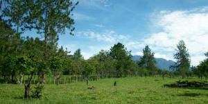 Terreno En Venta En Boquete, Boquete, Panama, PA RAH: 15-1318