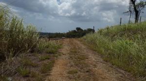 Terreno En Venta En La Chorrera, Chorrera, Panama, PA RAH: 15-1752