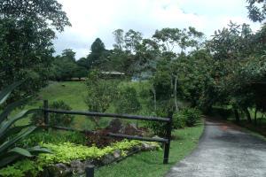 Terreno En Venta En Chiriqui, Chiriqui, Panama, PA RAH: 15-2666