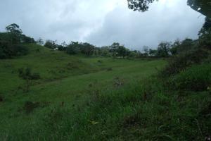 Terreno En Venta En Chiriqui, Chiriqui, Panama, PA RAH: 15-2672