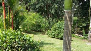 Terreno En Venta En La Chorrera, Chorrera, Panama, PA RAH: 15-2830
