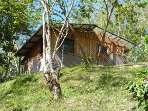 Terreno En Venta En Chiriqui, Chiriqui, Panama, PA RAH: 15-3150