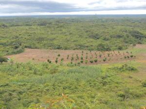 Terreno En Venta En Cocle, Cocle, Panama, PA RAH: 15-1031